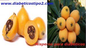 Te de hojas de nisperos para diabeticos los nispero para diabeticos es una fruta con propiedades y beneficios maravillosos y muy saludables para el cuerpo