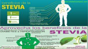stevia endulzante para diabeticos – Todos los beneficios y propiedadesHola queridos lectores hoy hablaremos de la Stevia edulcorante para diabeticos el mejo