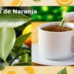 Hojas de naranja, beneficios y propiedades