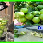 Bebida de limón y manzana verde para diabéticos
