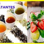 Bebidas hidratantes para diabéticos tipo 2