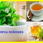 Remedios para la limpieza de los riñones