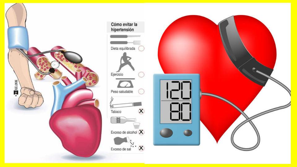 La diabetes y sus efectos sobre el corazón Siguiendo con el estudio de la diabetes y para entender tener una fácil compresión de los efectos y complicacione