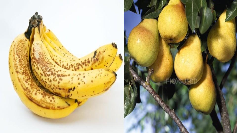 La fruta madura y su enemistad con las personas diabéticas Las frutas son altamente recomendadas para quienes desean o deben llevar una vida saludable