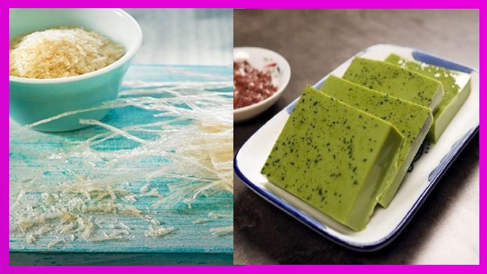 Algas agar agar: Propiedades, beneficios, usos y recetas Las algas son muy populares en la gastronomía, sobre todo en recetas originarias de los países
